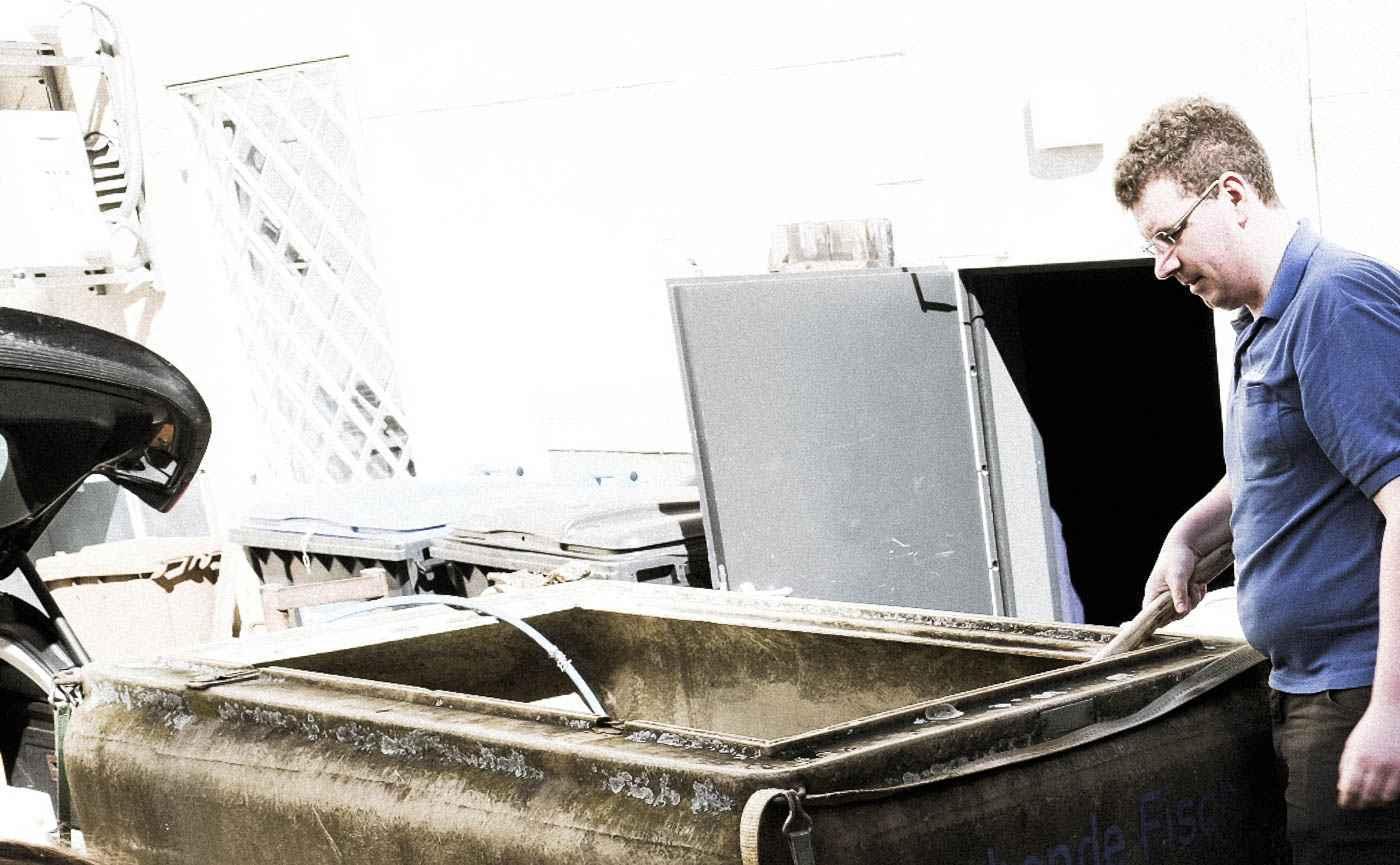 Die Fischer von der Fischerei Müritz-Plau, die schon länger mit Micha Schäfer vom Nobelhart und Schmutzig zusammenarbeiten, haben auf einem Anhänger lebende Fische mitgebracht, Saiblinge und Störe, die sich zunächst von der Fahrt erholen dürfen.