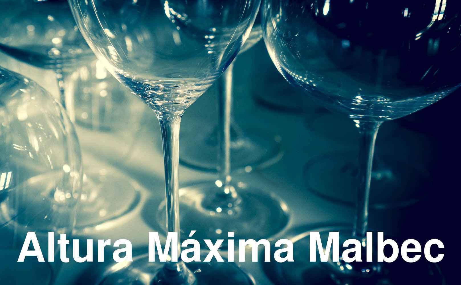 Go to Altura Máxima Malbec von Bodega Colomé aus Valle Calchaquí, Argentinien