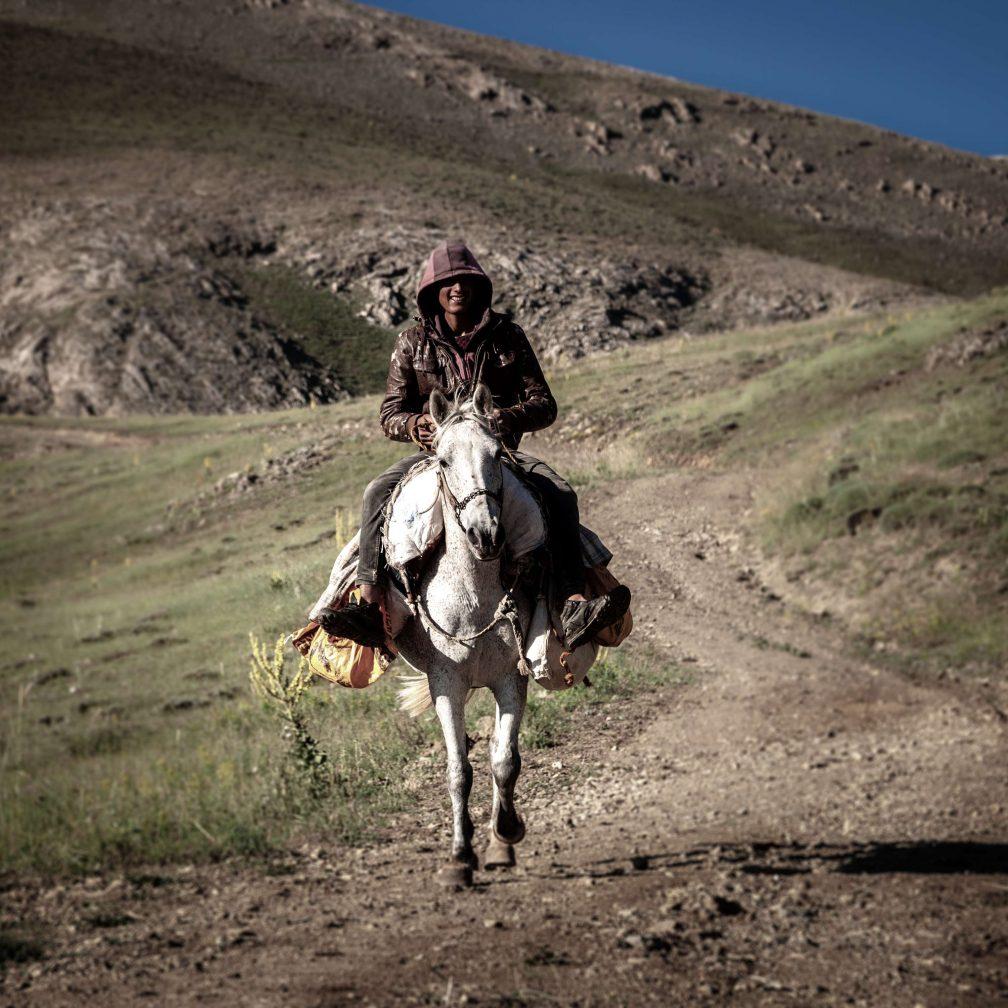 Der Quark wird mit dem Pferd auf den verschiedenen Weidegründen gesammelt