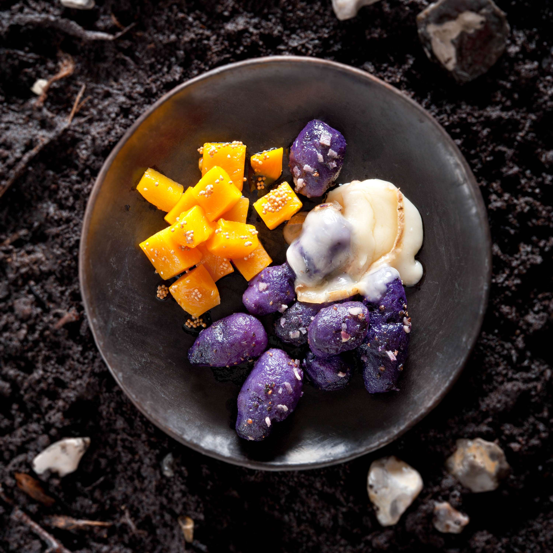 Blaue Kartoffeln in Pfefferbutter mit Kürbiswürfeln und Taleggioraclette