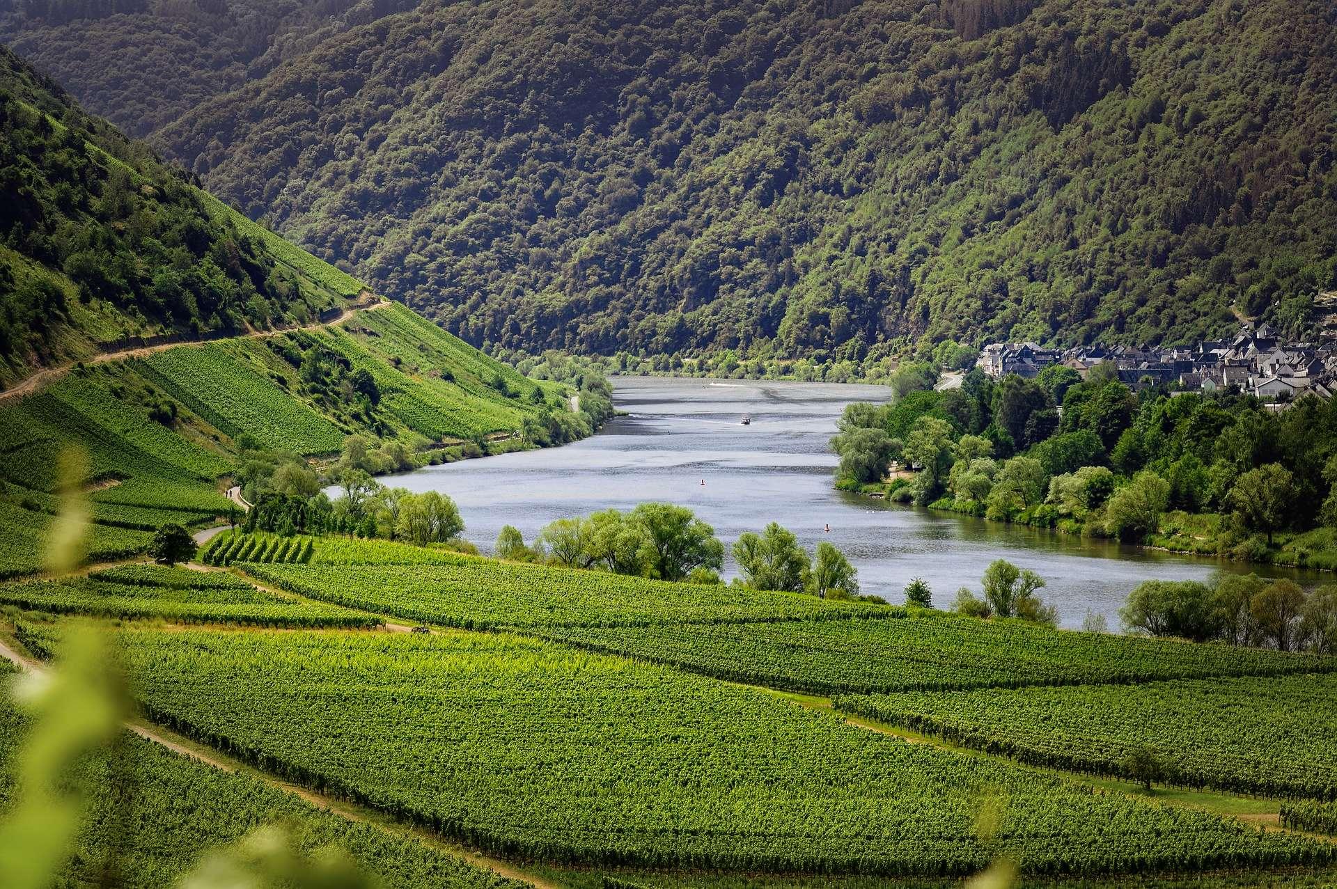 Flussgenuss für Weinliebhaber