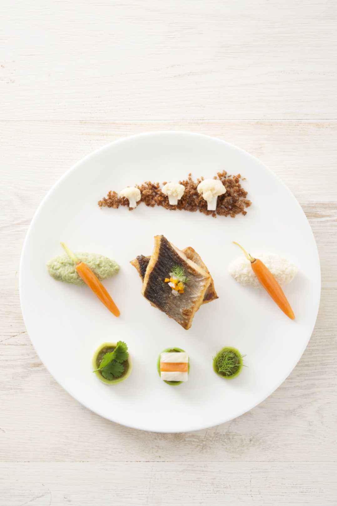 Forelle/ Matcha/ Blumenkohl/ Fenchel/ Roggen